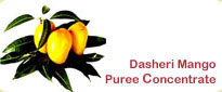 Dasheri Mango Puree Concentrate