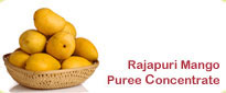 Rajapuri Mango Puree Concentrate