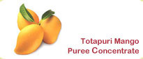 Totapuri Mango Puree Concentrate