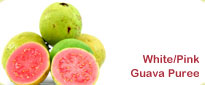White Pink Guava Puree